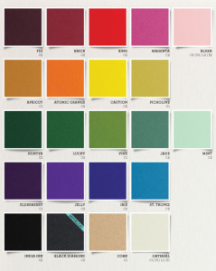 New Envelopments Colors of 2013 color swatch