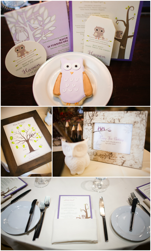 Sweet Owl Birthday Party Decor 1