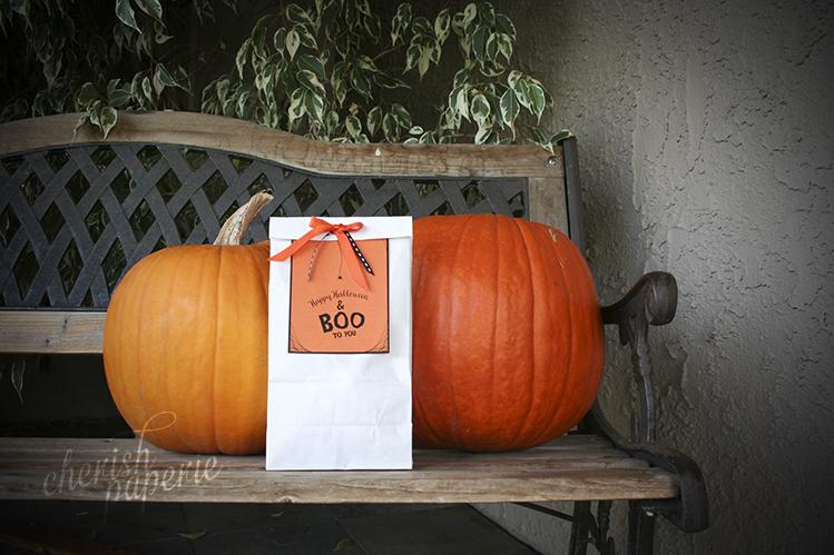 halloween DIY crafts; Hoy to make a boo bag; boo bag; halloween ideas; holiday cards