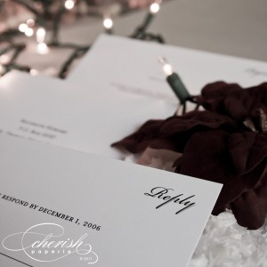 Snowflake weddingNEW_20 copy