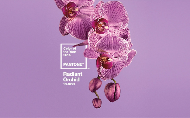 Radiant Orchid, Radiant Orchid Inspiration, 2014 Color of the Year, Pantone 18-3224, Purple Weddings, Purple wedding inspiration, Orchid wedding Inspiration, Moodboard, Pinterest inspiration, Purple Invitations, Orchid Wedding